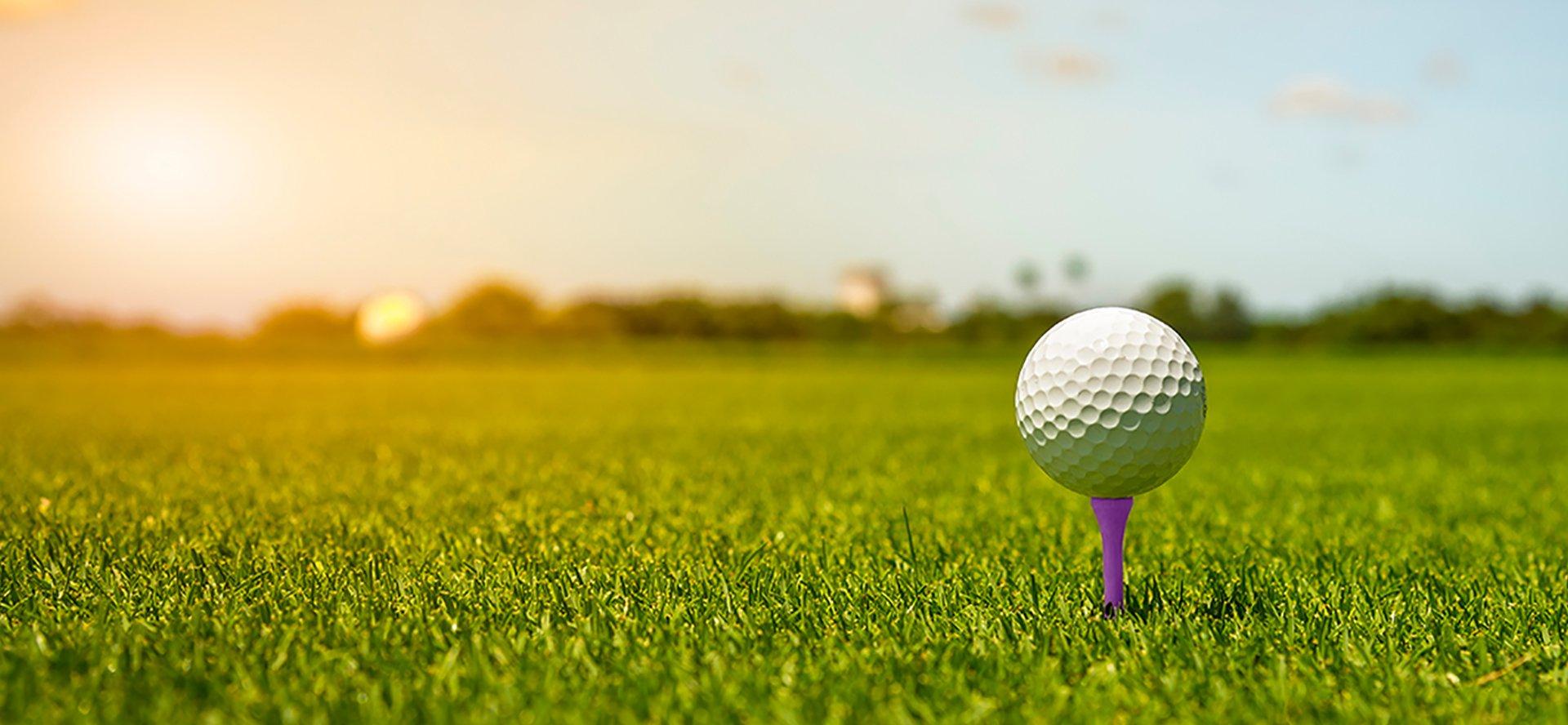 Zipie_GolfBall_1920x888-1